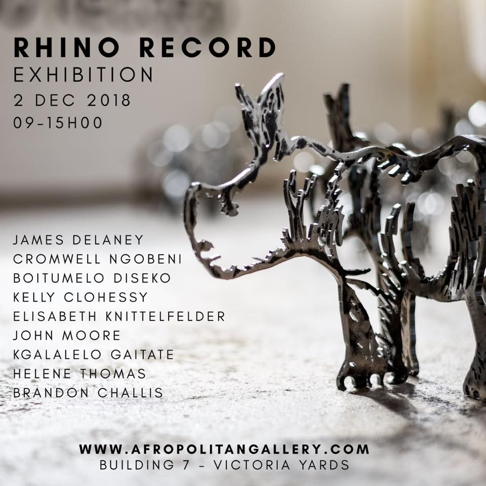 RHINO RECORDS, Afropolitan Gallery, Johannesburg, South Africa